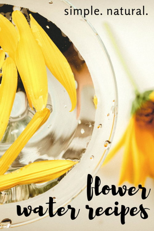 Flower water recipes. These simple, natural flower water recipes are a wonderful way to freshen your home and linens. They can also be used as natural perfumes for your body. Made using a combination of natural flowers, herbs and essential oils, these healthy homemaking recipes are perfect for room sprays to freshen laundry, linens and the air or as herbal body sprays. Learn how to craft your own simple flower water recipes for your home or body now!