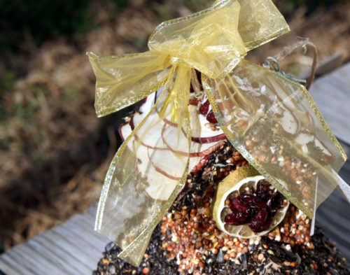 homemade birdhouse with edible dried fruits, nuts and seeds