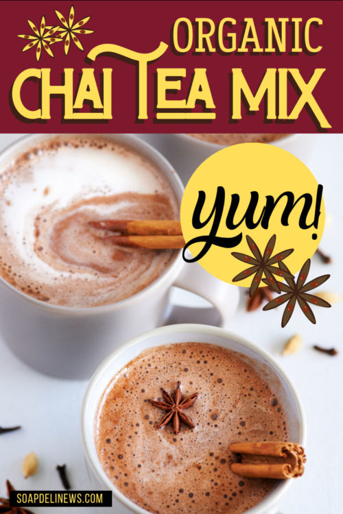Chai tea mix recipe: Easy winter DIY holiday gifts. Learn how to make an organic chai tea mix to give as DIY holiday gifts this winter. Don't forget to make extras though! This easy DIY chai tea mix recipe is so delicious, you'll want to keep a few extra bags of this spicy, homemade chai tea mix for yourself. Package this recipe for chai tea mix in a jar or in a bag - for personalized gifting and storage. Learn how to make your own chai tea spice mix with organic spices.
