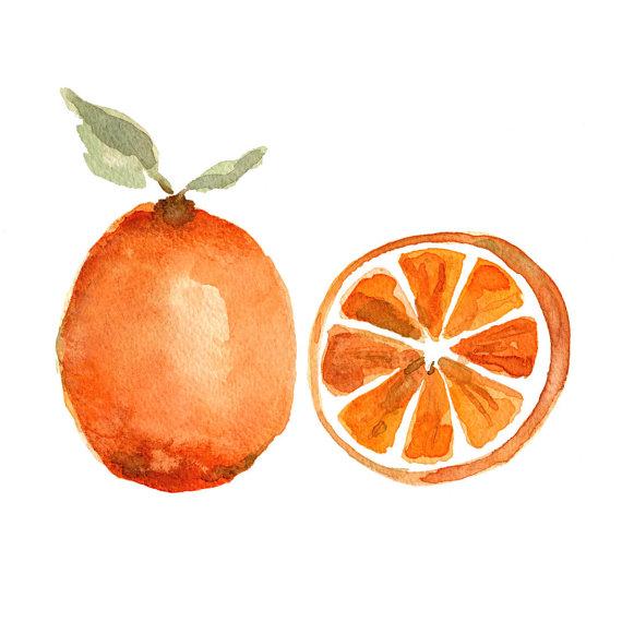 Orange Study Watercolor Art Print by The Joy of Color