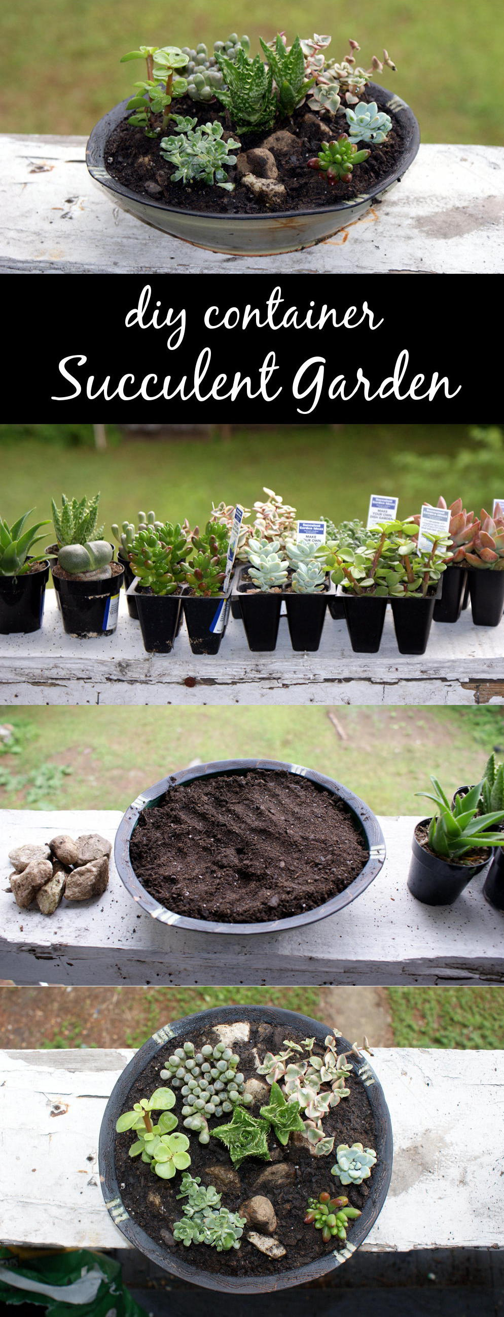Craft this DIY succulent container garden for Mother's Day! These easy to care for and easy to make succulent container gardens make wonderful homemade Mother's Day gifts!