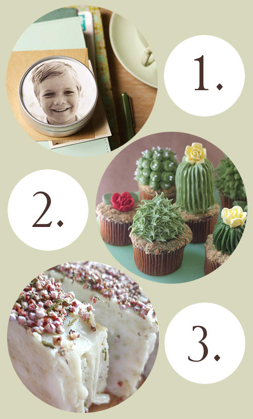 DIY Favorites to Make and Bake - Photo Tin, Cactus Cupcakes, and Faux Hot Process Soap