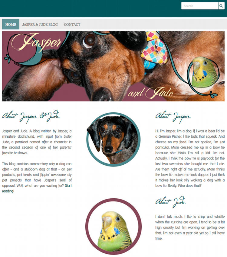 Jasper and Jude Blog - A Blog About Pets and Pet Things Written by Jasper, A Miniature Dachshund, and Sister Jude, A Parakeet.
