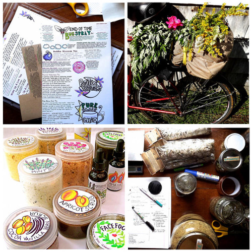 Good 4 You Herbals - Natural handmade herbal salves, lip balms, floral waters and wild herbs
