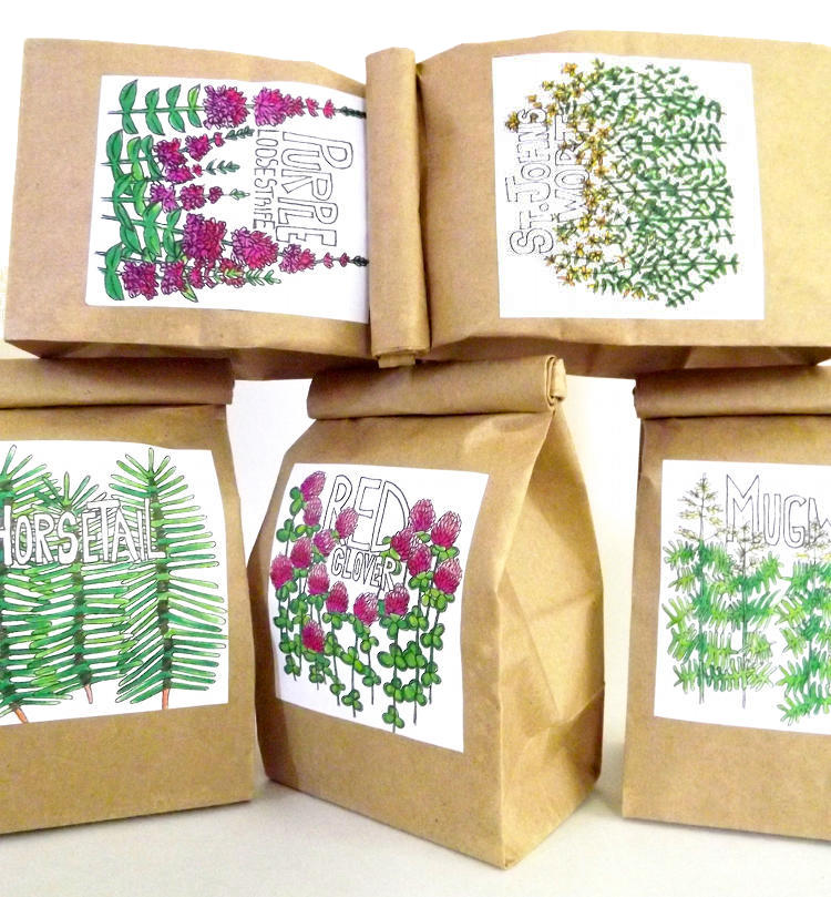 DIY Basic Tea Making - How to Make Custom Herbal Tea Blends and Medicinal Home Remedy Teas