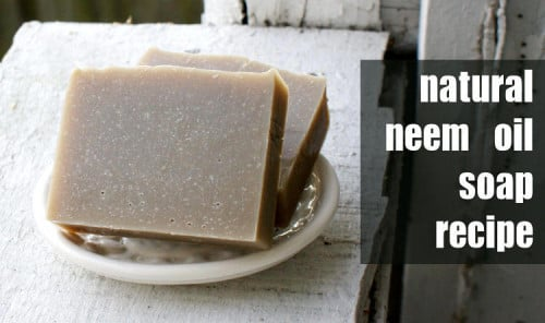 DIY Natural Neem Oil Soap Recipe - This handmade cold process soap is perfect for those with skin issues like eczema, psoriasis and Homemade Neem Oil Soap Recipe for Eczema, Psoriasis and Seborrheic Dermatitis