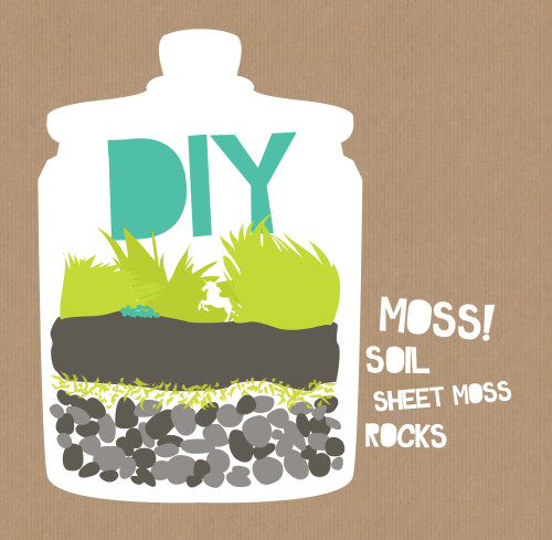 How to Make Beautiful DIY Moss Terrariums for Homemade Gifts for Home Accent Pieces