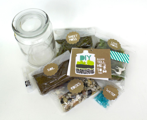 Moss Love Terrarium DIY Kit - The Perfect Gift for the DIY-er
