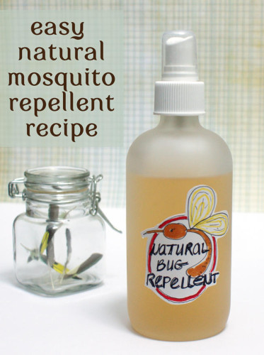 Natural Homemade Easy Bug Repellent Recipe Effective And Requires As Few Two Ings