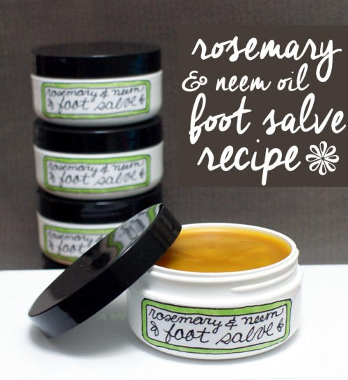 Natural Rosemary & Neem Oil Foot Salve Recipe with Lanolin! This natural foot salve recipe is perfect for dry and even cracked feet and helps to prevent fungal growth and infections caused by diabetes or ingrown toenails.