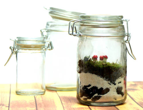 Make your own DIY terrarium to dress up a corner in your home or to give as a homemade gift!
