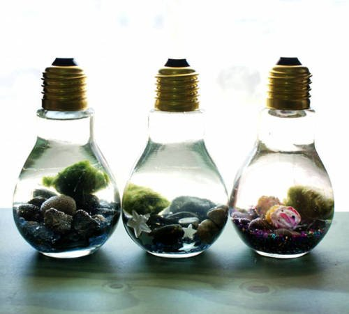 These easy DIY light bulb aquariums make a great home for tiny Japanese Marimo moss balls and are super cute as homemade Father's Day gifts!