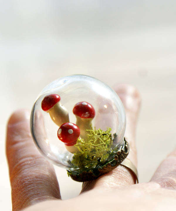 How to make a DIY terrarium ring.
