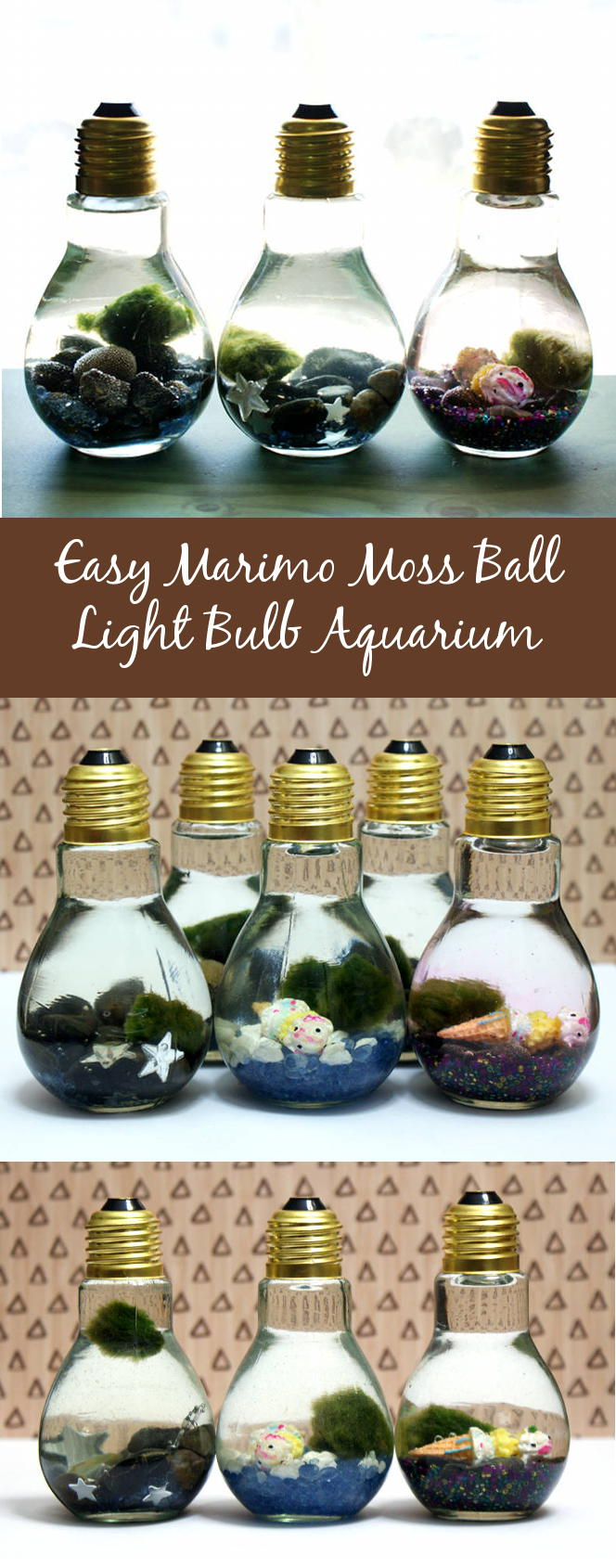 Learn how to make your own easy Marimo moss ball DIY light bulb aquarium! These tiny aquariums make a great home for tiny Japanese Marimo moss balls! Not only is each DIY light bulb aquarium super cute, but they are perfectly sized to sit at your desk or night to keep you company!