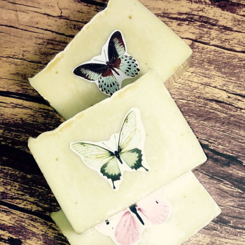 This traditional Castile soap recipe is made using 100% olive oil and is scented with natural basil, lemongrass and rosemary essential oils.