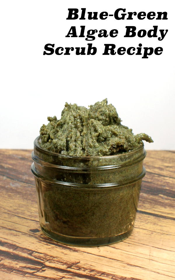 This natural blue-green algae body scrub recipe with coconut oil contains blue-green algae rich in vitamins & minerals, lipids, active enzymes, and amino & nucleic and fatty acids and combines it with the moisturizing power of coconut oil also prized for its high vitamin E content and essential fatty acids.