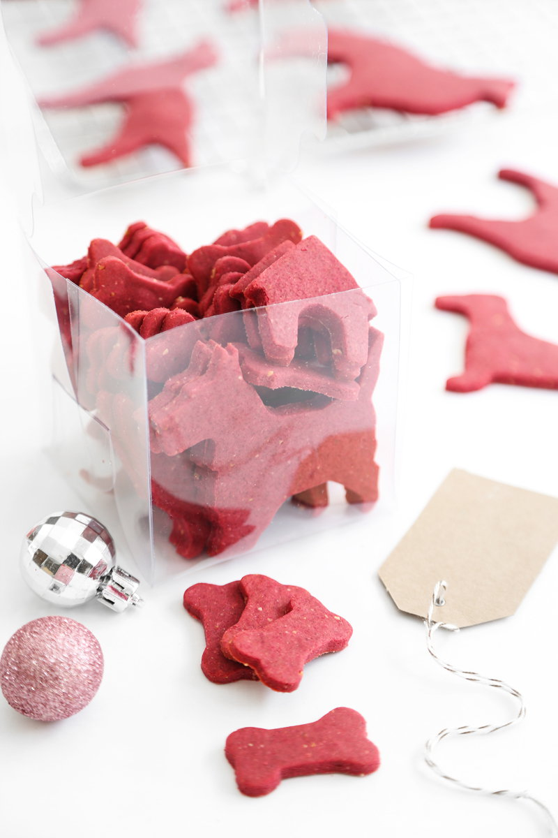 Treat your furry best friend this Christmas with these DIY Christmas cookies for dogs!
