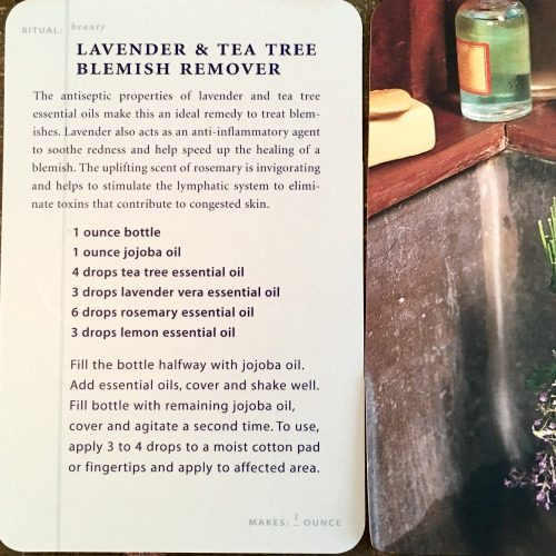 Lavender + Tea Tree Blemish Remover Recipe via The Spa Deck