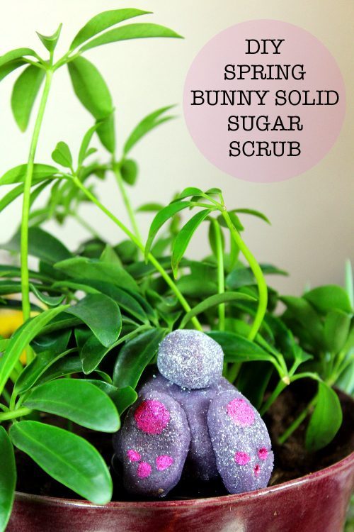 Learn how to make your own fun DIY spring sugar scrubs in bunny and chick shapes for Easter! Made from a moldable semi-solid sugar scrub, these spring sugar scrubs are fun both in and out of the tub!