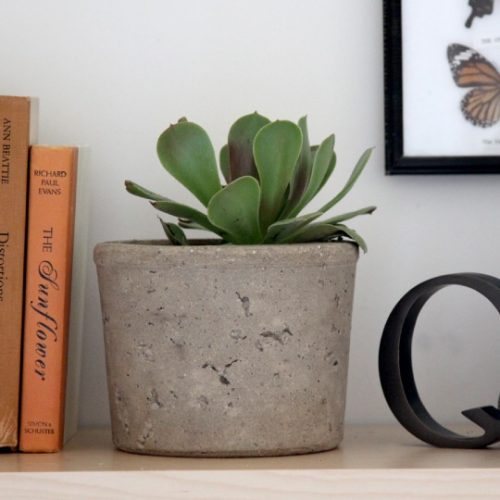 How to Make Modern Cement Planters Using Packaging via Re-Nest