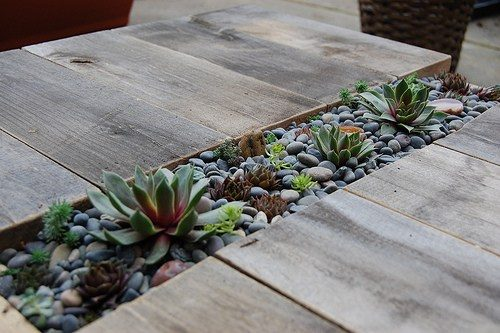 DIY Succulent Table via Far Out Flora Blog!