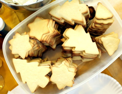 Celebrating Holiday Traditions Through Life's Changes. Plus how to host a holiday cookie exchange and a collection of homemade Christmas cookie recipes.