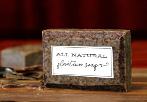 Plantain Soap Recipe with Date Sugar & Frankincense! This natural soap recipe is handmade using the cold process soapmaking method. Perfect for dry or problem skin, this homemade plantain soap recipe produces low cleansing, super nourishing soap bars with an exceptional lather. Discover the recipe for this palm free plantain soap recipe now at Soap Deli News blog. #soap #plantainsoap #soaprecipe #soapmaking #diy #crafts
