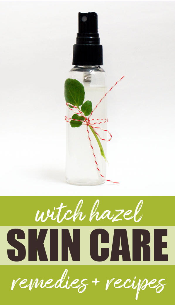 Uses for Witch Hazel Extract for Skin Health (Plus ten recipes to make right now!) Pull your witch hazel out of the medicine cabinet for these natural home remedies + skin care recipes! Witch hazel extract has been used for centuries as a home remedy to soothe everything from swelling and sores to infections and natural skin care. Learn more about the powerful herbal properties of this flowering shrub as well discover some of my favorite recipes and uses for witch hazel extract. #witchhazel #herbalism #homeremedy #naturalremedy #remedies #skincare #diy #folkmedicine