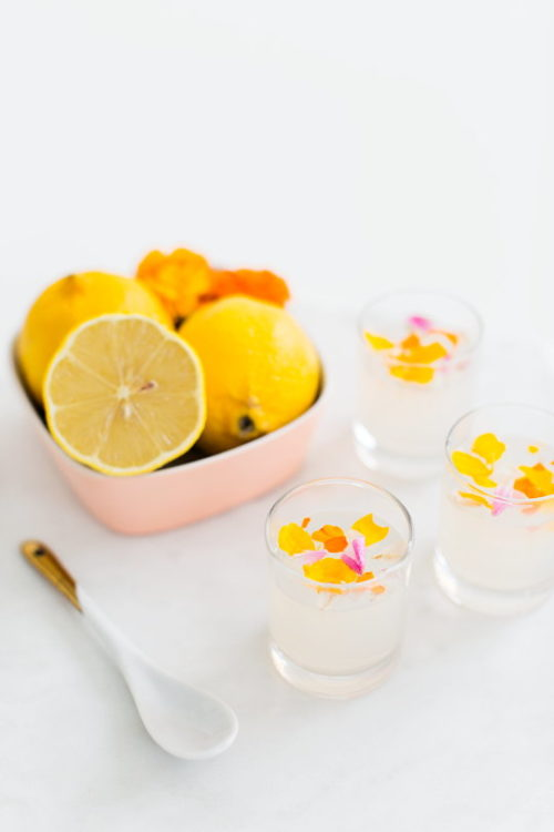 Spring Flower Craft Projects To Welcome Spring Into Your Home! Flowers aren't just for display. You can eat them too! Learn how to make these edible flower lemon jello shots for your next spring fling with your gal pals with this delicious recipe from Sugar & Cloth.
