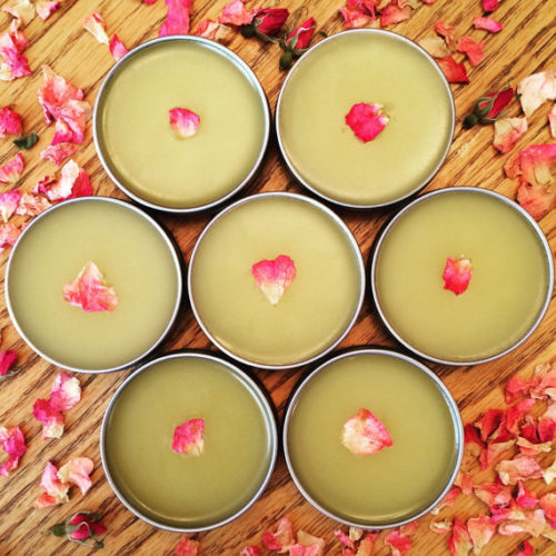 Prairie Rose Salve! This wild rose herbal salve from Prairie Folk Supply Co. contains the ferocity and wildness of prairie rose. Sweet petals were harvested after a prairie fire during luscious regrowth and soaked in organic olive oil. Use this salve for chapped or dry skin, insect bites, abrasions, rashes, lips & cuticles. #salve #herbalsalve #artisan #naturalskincare #naturalbeauty