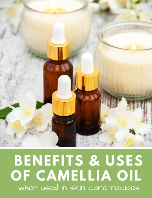 Usage & Benefits of Camellia Oil (Tea Seed Oil) in Skin Care for Natural Beauty. 6 Great Summer Beauty Tips Plus 12 Summer Skin Care Recipes for Dry Skin with Camellia Seed Oil.
