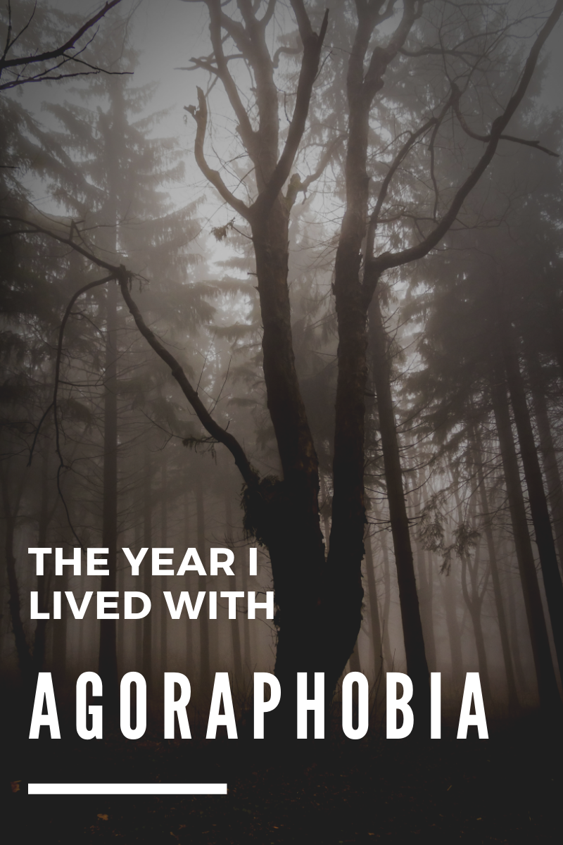 The year I lived with agoraphobia. (And other things we don't talk about.) Sometimes we catch ourselves in a trap of our own making. Which is exactly how I came to be diagnosed with agoraphobia in the first place.