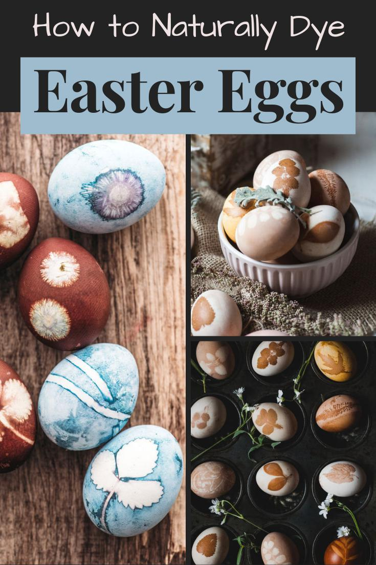 How to Dye Easter Eggs Naturally (Using Food Ingredients As Natural Dyes) & Easter Egg Design Techniques to Try! Learn how to dye Easter eggs naturally using food ingredients as natural, plant-based dyes to craft Easter holiday DIY home decor, spring decorations or edible Easter treats for Easter baskets. Plus unique Easter egg design ideas using foraged botanicals or store bought herbs. #eastereggs #diyhomedecor #holidays #diy