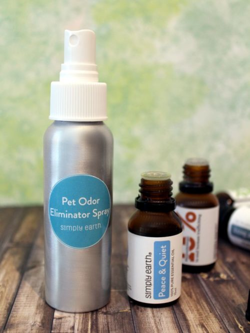 Pet odor eliminator spray recipe with pet safe essential oils. Learn how to make a DIY odor neutralizing pet spray to refresh your home, pet bed or other stinky surfaces. You'll also learn about the best essential oils for pets, tips for introducing your pet to essential oils and five more natural essential oil pet care recipes.