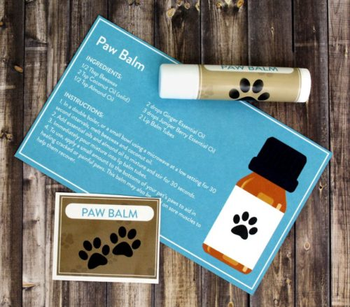 Pet paw balm recipe with essential oils. Learn how to make a DIY pet paw balm to aid in healing cracked or painful paws. It can also be used on sore muscles - both on you and your pet! - to help them recover.