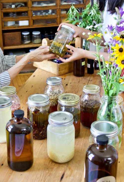 How to make herbal preparations as part of a free online herbalist course. Learn the basics of herbal preparations. What they are, why they work the way that they do, when to use them, and of course, how to make them. This course also covers four categories of herbal preparations. This includes valuable information on water- and sweet-based preparations to alcohol- and oil-based preparations as well as detailed, step-by-step video tutorials for each of these common preparations for everyday use.