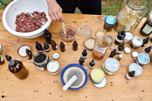 Free Online Herbalist Course. Discover herbalists' four basic categories of herbal preparations, 12 everyday safe herbs to use at home, and 33 DIY herbal recipes from teas and tinctures to salves and oils! This course will guide you through 7 convenient and compact lessons that are chock-full of hands-on activities, videos, and helpful herbal charts to guide you on your way to making herbal preparations at home. Beginners, this mini herbal course is for you!