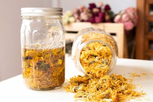 Online Herbalism Course. Are you looking for basic herbalism skills you can practice in your day to day life? Then don't miss out on this free online herbalist course from the Herbal Academy! Available for a limited time only, this free online herbalist course will teach you how herbs are used and prepared for everyday use. By the end of the course, you can begin making your own herbal recipes at home! Keep reading to learn more about this exciting herbalism course.