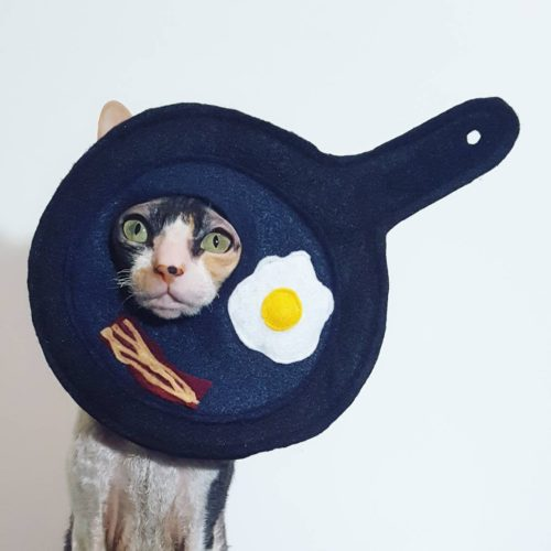 Gift Guides for Pet Lovers: Whether your gift recipient loves dogs, cats, birds -- whatever, these gift ideas for pet lovers are sure to please even the most particular pet owners. Like this Breakfast Pan Egg and Bacon Cat Costume Hat for Small Dogs & Cats via Ticketybootique on Etsy. Out of the fire and into the frying pan! This silly hat will give you some belly laughs for a funny photoshoot or a hilarious gift for the pet lovers in your life.