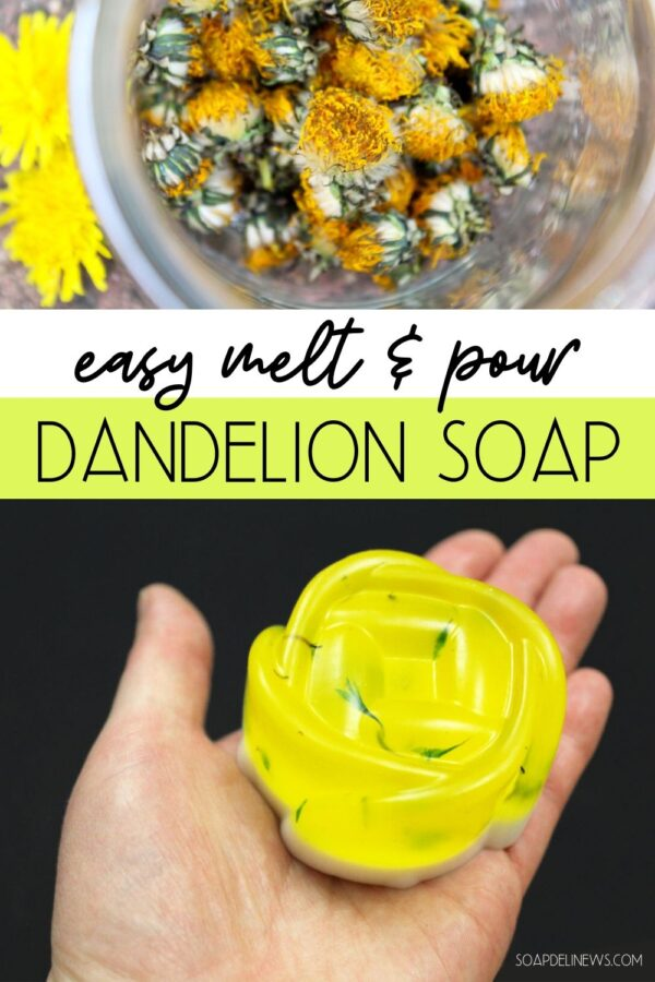 Dandelion soap recipe with lavender and orange essential oils. An easy melt and pour soap recipe for beginners for your everyday skin care routine for natural beauty. This DIY dandelion soap is a simple way to incorporate dandelion infused oil into your daily beauty regimen. Learn about the health and skin care benefits of dandelion and discover melt and pour soap making tips and tricks. A green beauty recipe perfect for beginners to get started making their own natural skin care products.