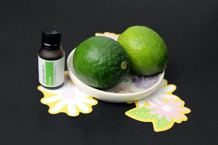 How to use citrus essential oils to make a DIY solid dish soap that cuts grease and cleans dishes.